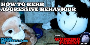 how_to_kerb_aggressive_behaviour